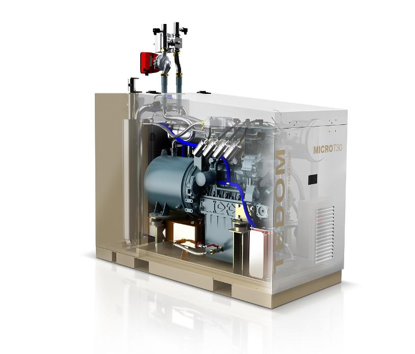 Micro Cogeneratore